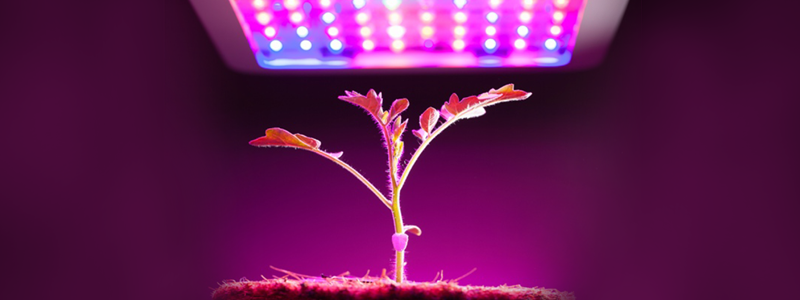 Best LED Grow Lights: A Ultimate Guide for Growing Plants (2018)